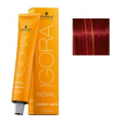 Igora royal fashion lights l-88